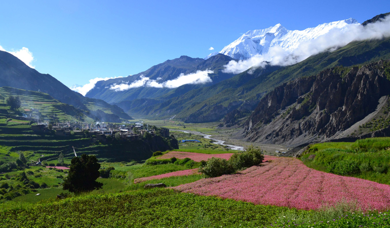 Tsum Valley & Manaslu Trek